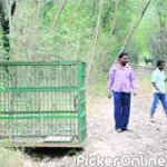 Chief Conservator of Forests & Field Director Pench Tiger Project