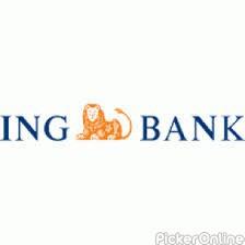 ING Vysya Bank LTD Dhantoli