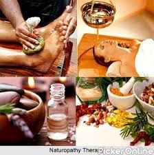 Institute Of Naturopathy Science