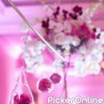 S Nakhate Caterers And Decoration