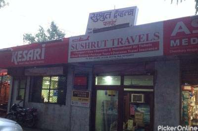 SUSHRUT TRAVELS