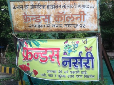 Friends Nursery - Nagpur Best Plant Nursery