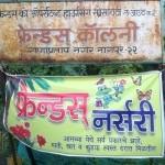 Friends Nursery - Nagpur Best Plant Nursery