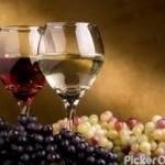 HIRO WINES