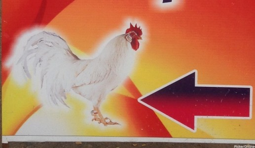 Welcome Chicken Shop