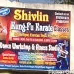 Shivlin Kung Fu Karate Classes