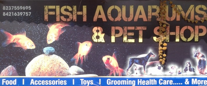 Fish Aquariums & Pet Shop