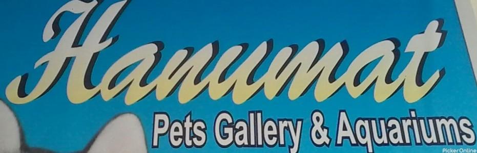 Hanumant Pets Gallery & Aquarium
