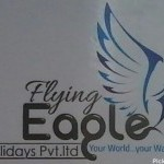 Flying Eagle Pvt. Ltd.