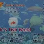 Aquatic Fish World