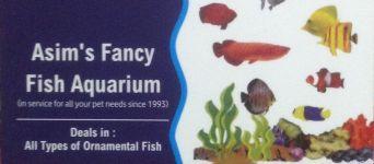 Asim's Fancy Fish Aquarium