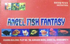 Angle Fish Fantasy
