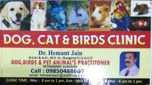 Dog, Cat & Bird Clinic
