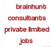 Brainhunt Consultants Pvt.Ltd