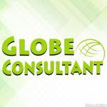 Globe Consultant