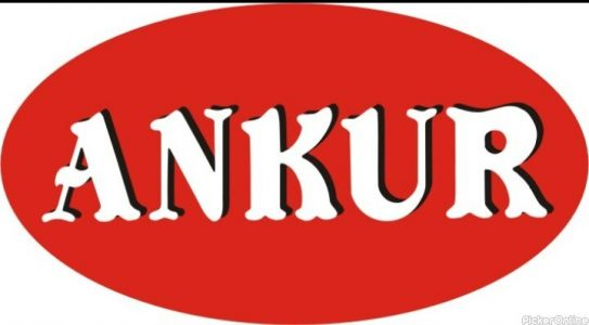 Ankur Enterprises