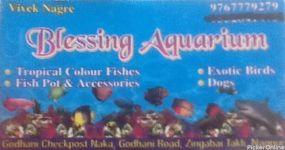 Blessing Aquarium