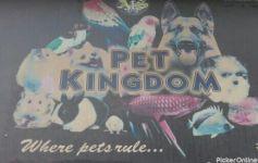 A S Pet Kingdom