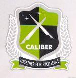 X-Caliber Coaching Classes