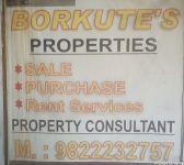 Borkute's Property Consultant