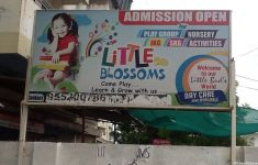 Little Blossoms & Play School