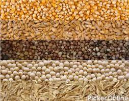 Amar Seeds