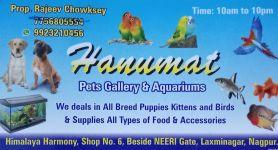 Hanumat Pets Gallery & Aquariums
