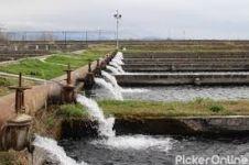 Swami Irrigation