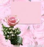 Kalash Wedding Cards