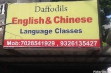 Daffodils English & Chinese Language Class