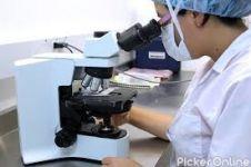 Dr. Pallavi Shah Pathology Lab