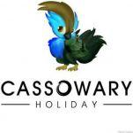 Cassowary holiday