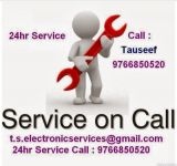 T. S. Electronic Services