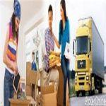 Best International Packers & Movers