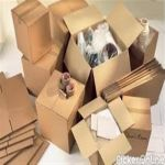 Dhanshree Packers And Movers