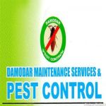 Damodar Maintenance Services And Pest Control