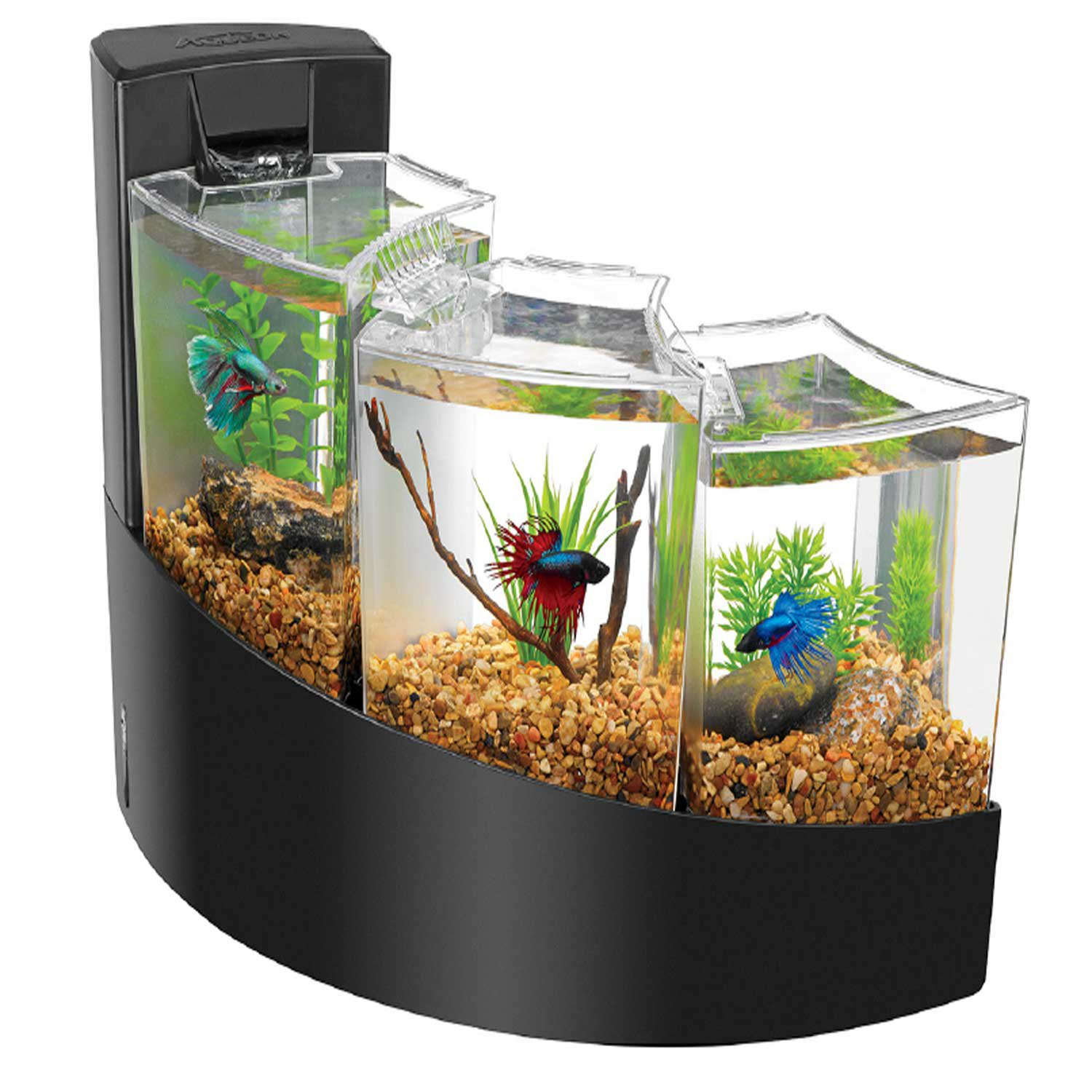 Fish aquarium shops in nagpur wholesalers dealers on for Cool small fish tanks
