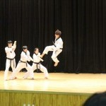 Taekwondo Coaching Classes